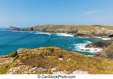South West coast path Cornwall - South West coast path view...