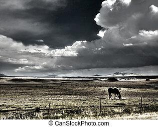 South Western USA Landscape