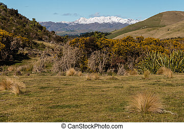 Southern Alps in New Zealand covered in snow in winter