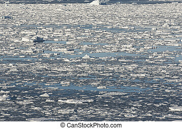 Southern Ocean off the coast of Antarctica.
