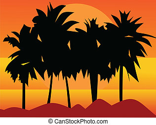Southern palm trees. Palm trees at sunset. Beautiful decline