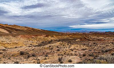 Southwest Desertscape