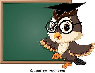 sova, učitelka, tabule