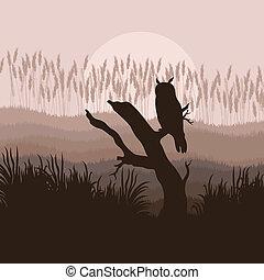 sowa, wektor, las, tło