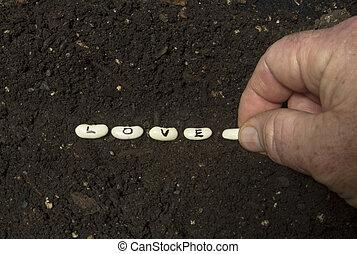 Sowing The Seeds Of Love - Sowing the seeds of love in rich...