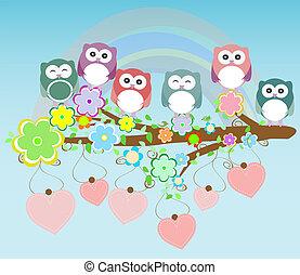 sowy, ptaszki, i, romansowe serce, drzewo gałąź