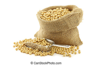 soy beans in a burlap bag with an aluminum scoop on a white...