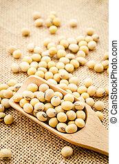 Soy beans in wooden spoon.
