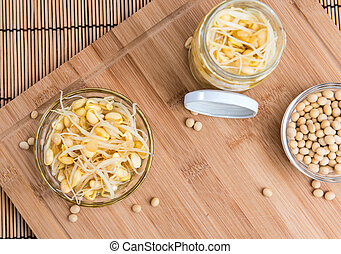 Soy Sprouts (preserved) - Preserved Soy Sprouts (close-up...