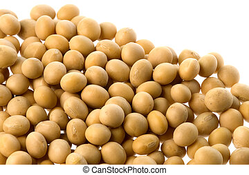 Soya Beans Isolated - Isolated macro image of soya beans.