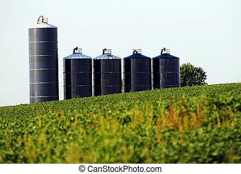 soybean Farm with silos