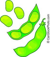 soybean vector illustration