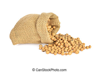 Soybeans isolated on the white backgrounds