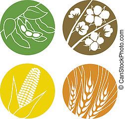 soybeans, katoen, koren, en, tarwe