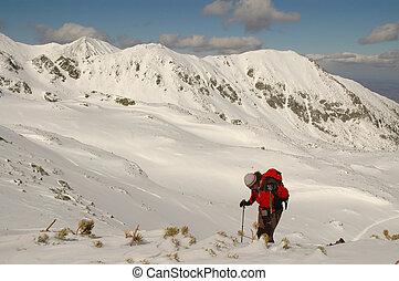 sozinha, ápice, escalador, alcançar
