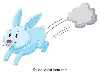 sozinha, cute, coelho running