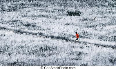 sozinha, em, a, selva