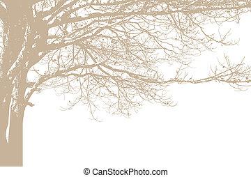 sozinha, vetorial, árvore, silhouette.