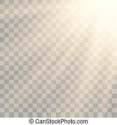 spécial, lumière soleil, transparent, vecteur