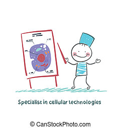 spécialiste, dans, cellulaire, technologies, parle, cellules