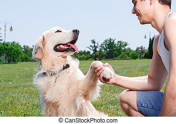 Spaß, Haben, hund