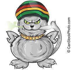 spaß, jamaikanisch, katz, freigestellt, weiß, hintergrund