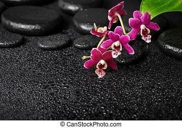 spa background of zen massaging stones, orchid