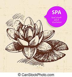 Spa background. Vintage hand drawn sketch illustration