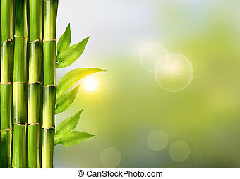 Spa background with bamboo.Vector