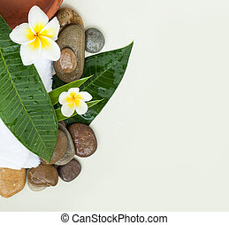 Spa background with green leaves, flowers and stones on white