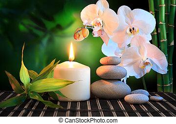 spa, composition:, blanc, orchidée