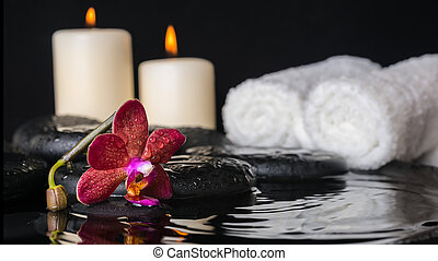 spa concept of deep purple orchid (phalaenopsis), zen stones wit
