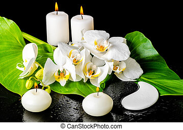 spa concept of orchid flower, phalaenopsis, leaf with dew, candles and Yin-Yang of stone texture on black background, closeup