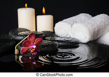 spa concept of zen stones with drops, purple orchid (phalaenopsi