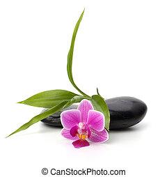 spa, concept., stones., orchidée, healthcare