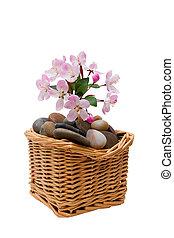 spa, fleurs, pierres