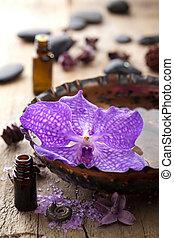spa, flor, orquídea