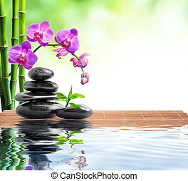 spa, fundo, com, bambu, orquídea