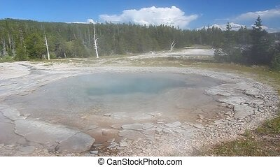 Spa Geyser of Yellowstone