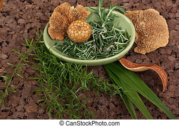 Spa  - Herbs and mushroom on cork mat