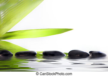 Conceptual wellbeing and pampering image of spa massage stones partially submerged in reflective water with green leaf fronds on a white background with copyspace