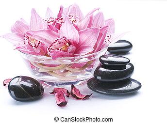 spa, pedra, massagem