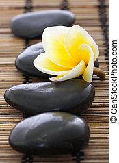 spa, pedras, com, frangipani, ligado, tapete