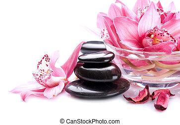 spa, pedras, massagem