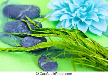 spa, pierres, et, fleurs, représenter, wellness/beauty, soin