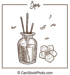SPA salon aromatherapy essential oil treatment vector sketch icon