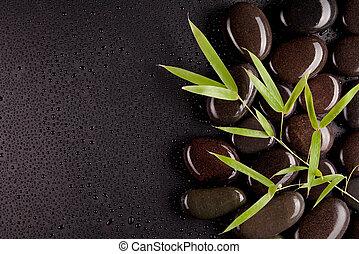 spa, stenen, met, bamboe, spruiten, met, dauw verschieet