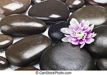 spa, stenen