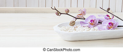 Spa still life with bath salt and orchid