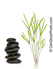 Spa Stones and Bamboo Leaf Beauty